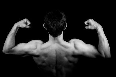 Back muscles stock image